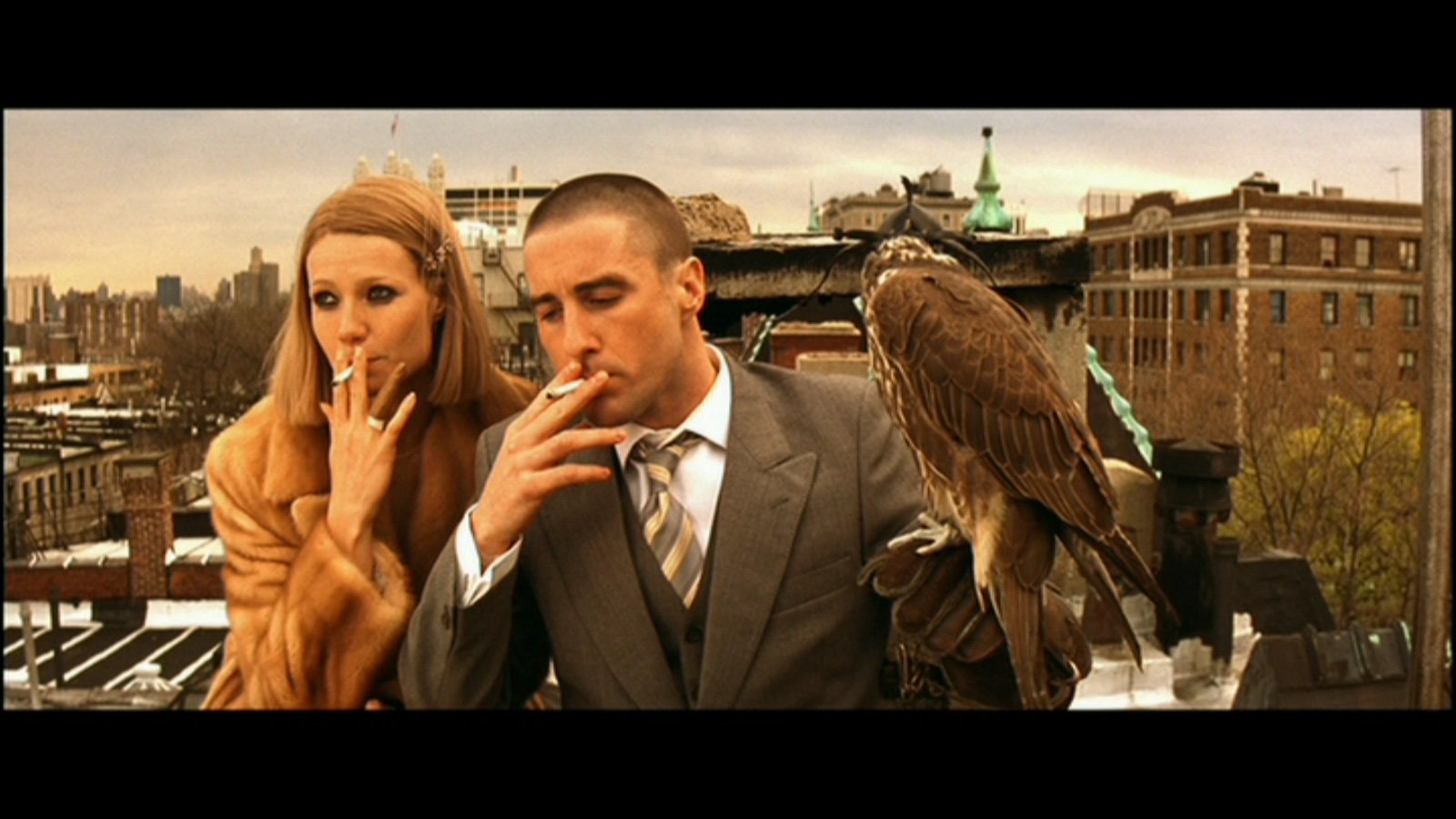 luke wilson cinema sips image credit touchtone pictures 2001 the royal tenenbaums