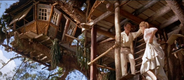 Image Credit: Walt Disney Productions, 1960, Swiss Family Robinson